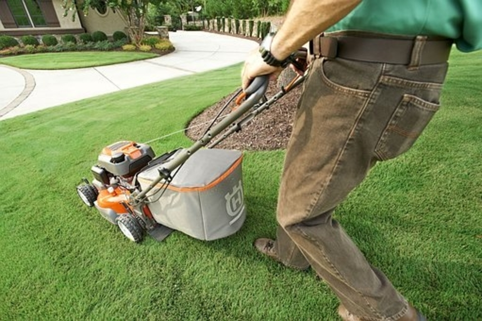 Best Lawn Mowers for a small yard