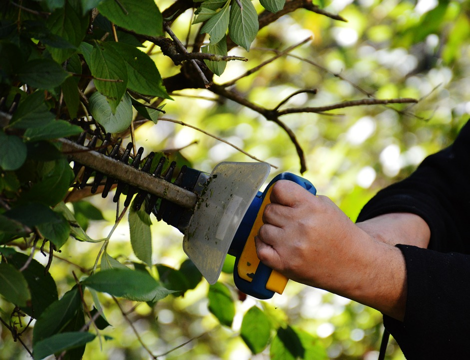 Best Battery Hedge Trimmers