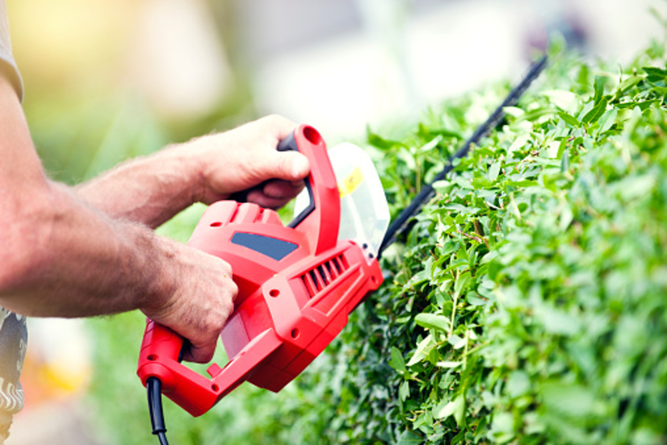 Best Commercial Hedge Trimmers
