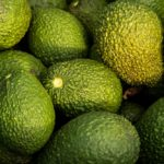 How Long Does It Take An Avocado To Bear Fruits
